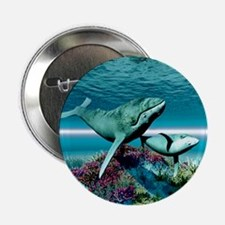 "Humpback Whales 2.25"" Button"