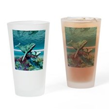Humpback Whales Drinking Glass