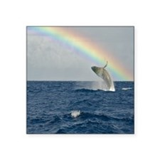 "Humpback Whale RAINBOW Square Sticker 3"" x 3"""