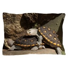 Diamond Back Terrapin Pillow Case
