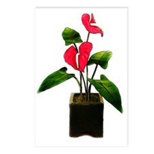 Red Anthurium in Planter Postcards (Package of 8)