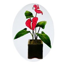 Red Anthurium in Planter Oval Ornament