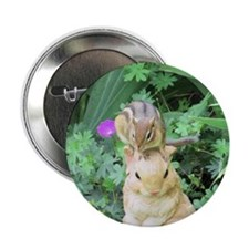"Chipmunk and garden bunny 2.25"" Button"