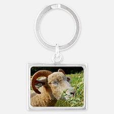 Contented Horned Dorset Sheep Landscape Keychain