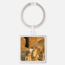 Horned Ewe with Twins Square Keychain