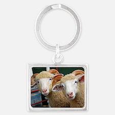 Inquisitive horned ewe lambs Landscape Keychain