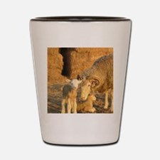 Horned Ewe with Twins Shot Glass