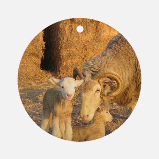 Horned Ewe with Twins Round Ornament