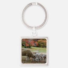 Fall Sheep Square Keychain