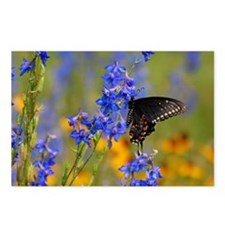 Wildflowers  Butterfly Postcards (Package of 8)