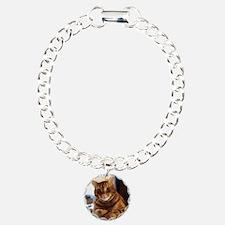 Buggs the Tabby Cat Bracelet