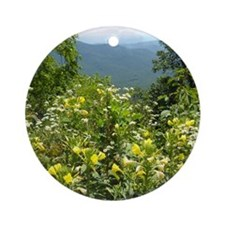 Blue Ridge Parkway Cutting Board Round Ornament