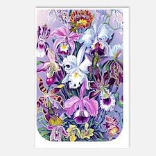 NOOK SLEEVE Cattleya Humm Postcards (Package of 8)