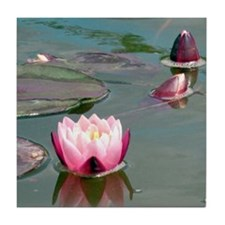Pink water lilies photo Tile Coaster