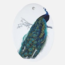 Vintage peacock Oval Ornament