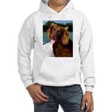 Boykin Spaniel on Board Jumper Hoody