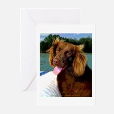Boykin Spaniel on Board Greeting Cards (Package of