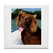 Boykin Spaniel on Board Tile Coaster