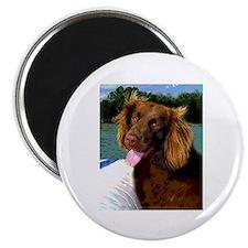 Boykin Spaniel on Board Magnet