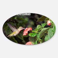 Hummingbird Sticker (Oval)