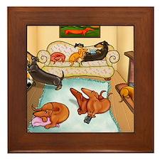 domestic dachshunds Framed Tile