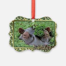 Hippopotamus Christmas Card Ornament