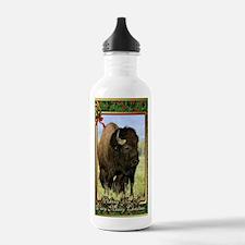 North American Bison C Water Bottle