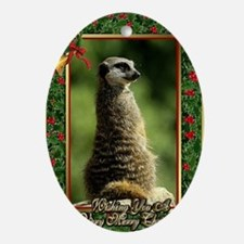 Meerkat Christmas Card Oval Ornament