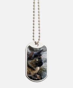Tortoise Shelled Stray Dog Tags