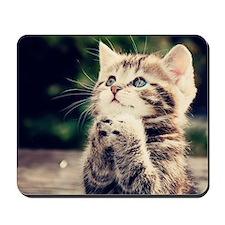 Cat Praying Mousepad