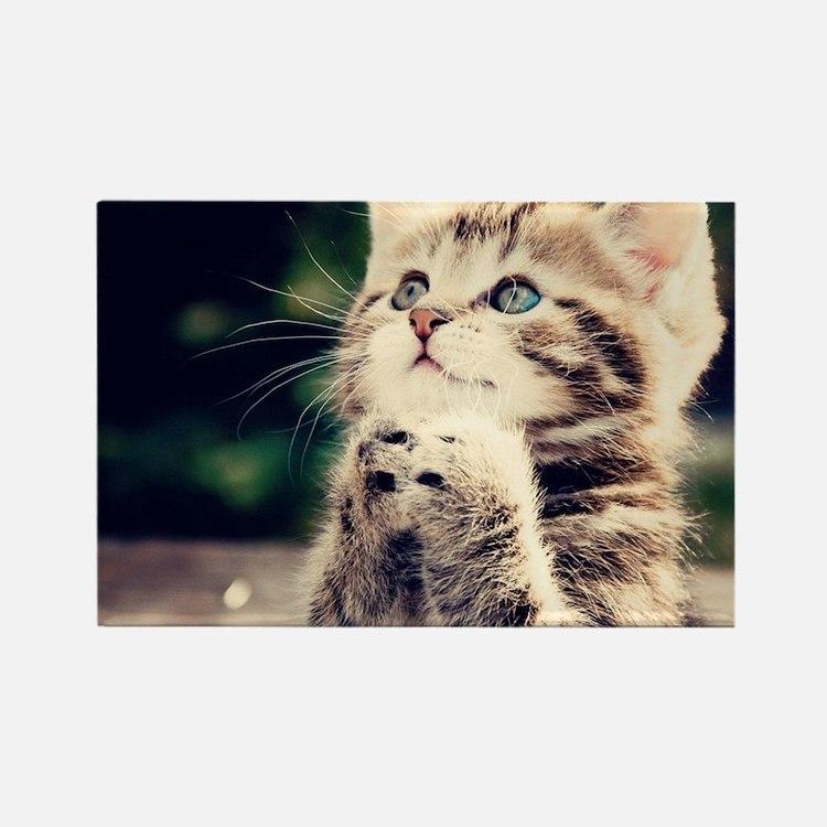 Cat Praying Rectangle Magnet