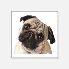 "Pug Oil Painting Face Square Sticker 3"" x 3"""