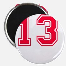 13 year aged to perfection designs Magnet