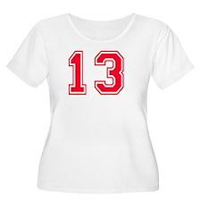 13 year aged  T-Shirt
