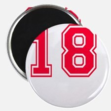 18 year aged to perfection designs Magnet
