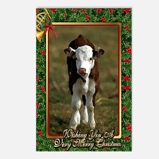 Hereford Calf Christmas C Postcards (Package of 8)