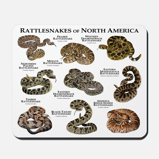 Rattlesnakes of North America Mousepad