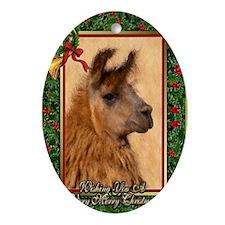 Llama Christmas Card Oval Ornament