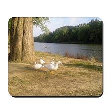 River Ducks Mousepad