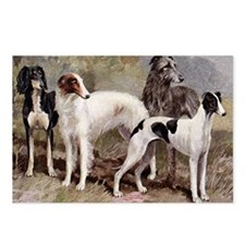 Borzoi And Sighthounds Postcards (Package of 8)