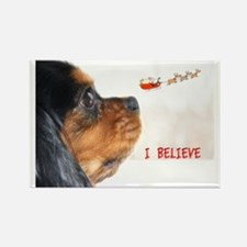 I Believe Cavalier King Charles S Rectangle Magnet