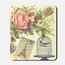 pretty vintage victorian birdcage and fl Mousepad