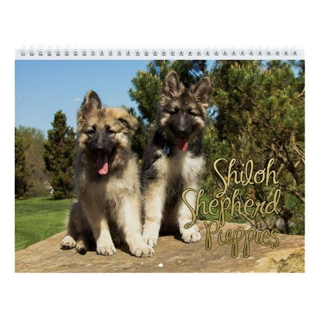 2014 Shiloh Puppy Wall Calendar