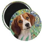 Irises & Beagle Magnet