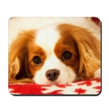Profile Of A Cavalier King Charles Seaso Mousepad