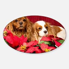 Christmas Cavalier KIng Charles Spa Sticker (Oval)