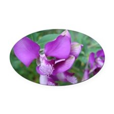 Purple Flower Oval Car Magnet