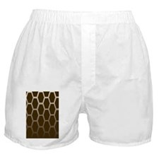 kindle brown on brown Boxer Shorts