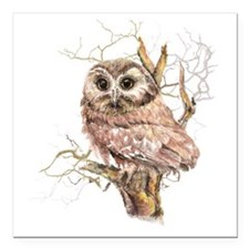 """Cute Baby Saw Whet Owl W Square Car Magnet 3"""" x 3"""""""