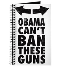 Obama Cant Ban These Guns Journal